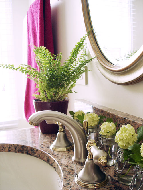 Ideas to make your bathroom fragrant how ornament my eden - Scented indoor plants that give your home a great fragrance ...