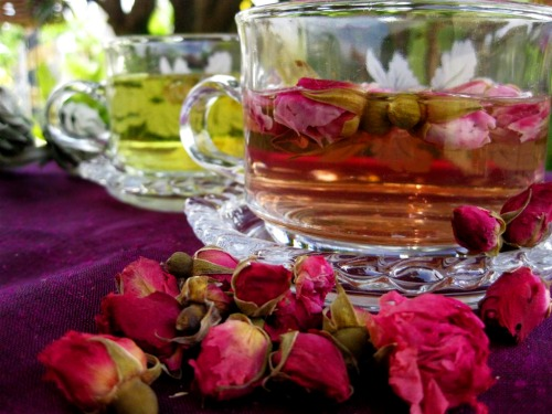 Rose bud flower tea