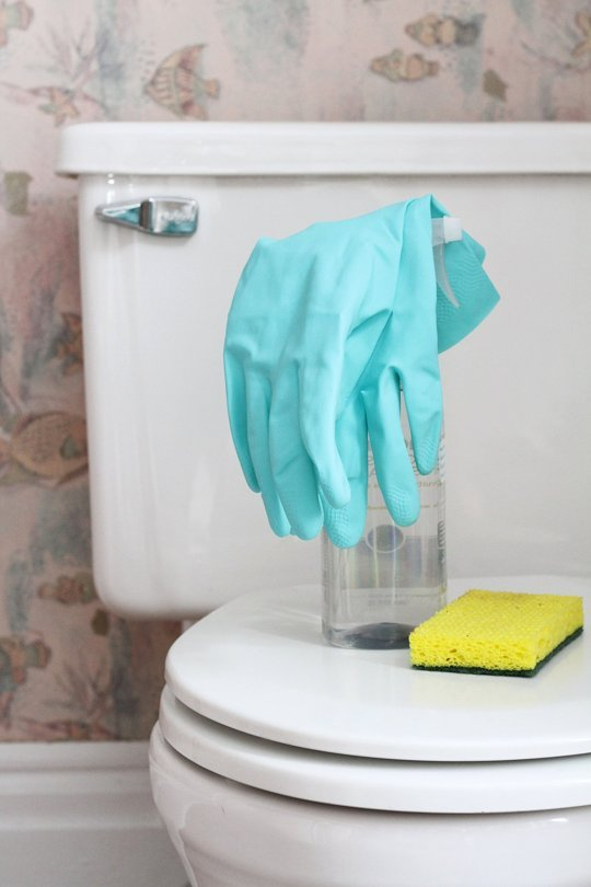 Simple Steps To Clean Your Toilet How Ornament My Eden