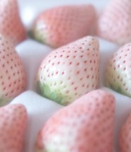 white strawberry seeds