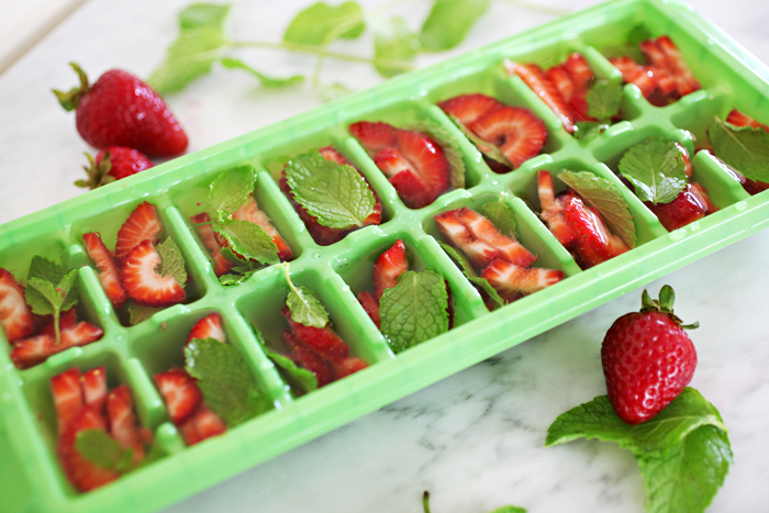 5 Smart Ways To Use Ice Cube Trays How Ornament My Eden
