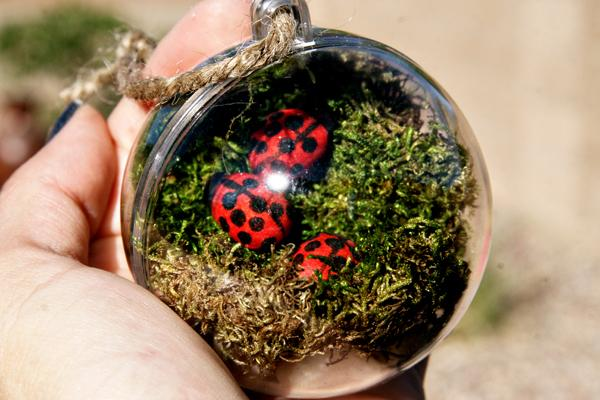 - Mini Terrarium Ornaments For Mini Landscaping How Ornament My Eden