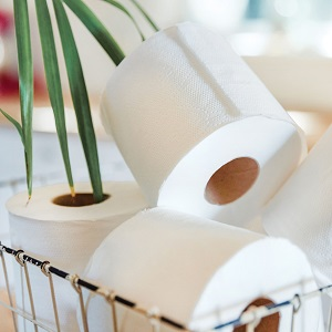 Which toilet paper is better, two ply, three ply or Ultra?